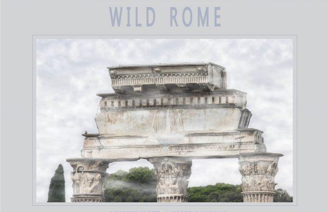 homo-ambiens-wild-rome-copertina