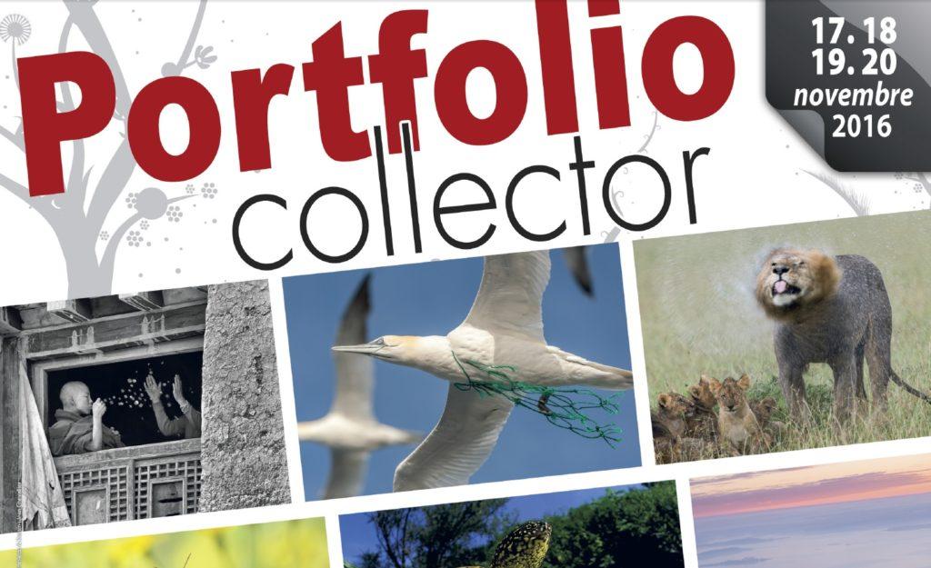 image-portfolio