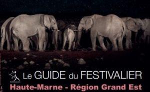 Guide festivalier actu