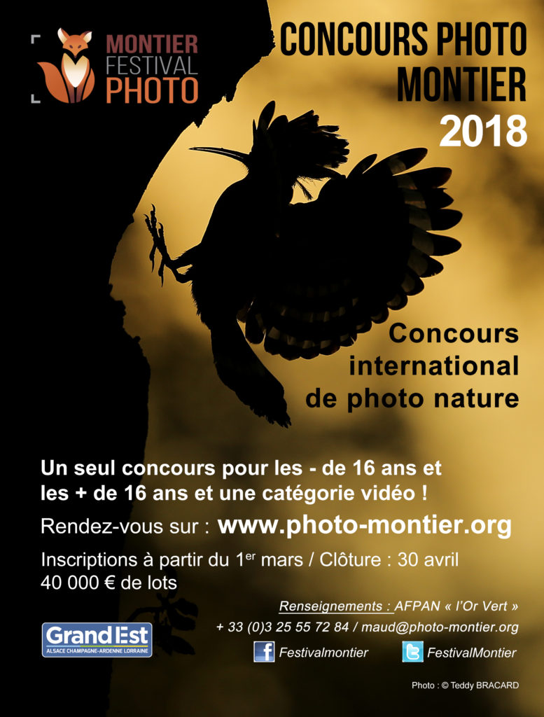 Insertion concours