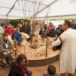 Education à l'environnement - Programme scolaire