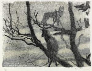 Cerf et loup, Slovaquie, 1948. - Robert Hainard