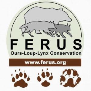 226_logo-ferus-3.jpg -