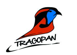 179_logo-okokgv.jpg -