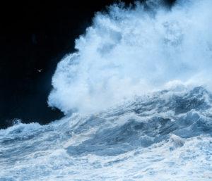 La vague - Guillaume Bily