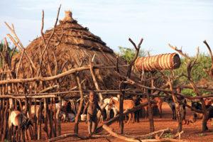 ÉTHIOPIE – Vallée de L'Omo Un jeune enfant passe la clôture du campement où une ruche attend d'être installée. Le peuple de pasteurs nomades Hamer comptent près de 40 000 personnes. Encore très traditionnels, ils vivent principalement de l'élevage. Les Hamer sont installés dans une région désertique, à la végétation plus clairsemée. Les ruches sont installées près des cours d'eau qui, se remplissent à chaque orage pendant la saison des pluies. Le développement de la vallée de l'Omo avec des projets d'agriculture intensive, d'infrastructures routières va sûrement transformer rapidement la vie de ce peuple. -