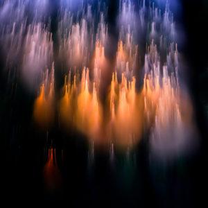 Forêt d'étoiles - Cathy Bernot