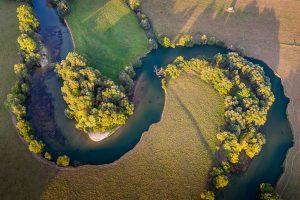 Forêt alluviale, rivière Meuse (Forêts remarquables de la région Grand Est, exposition Montier 2016) - © Patrick Dieudonné 2016