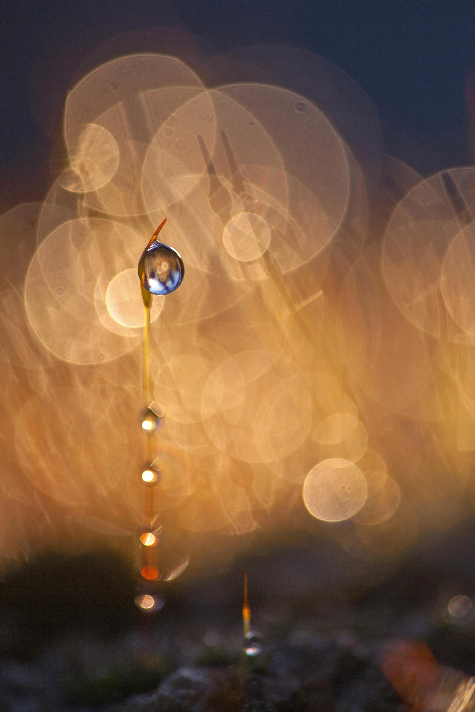 Ombres et lumière - Eric Egéa
