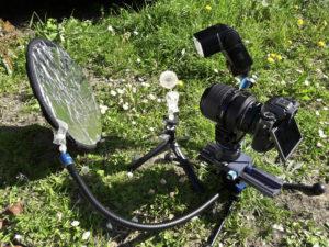 Phototem, Photo & Nature - Phototem, Photo & Nature