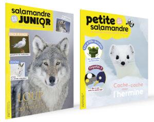 Revue Petite Salamandre et Salamandre Junior - Salamandre