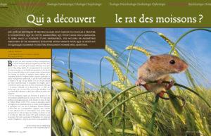Extrait Espèces n° 23 - Klein et Hubert/Naturagency/Espèces