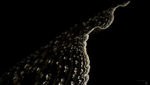 STONE MUTAGEN - Marc Boulay