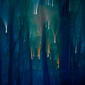 Vivants piliers - Cathy Bernot