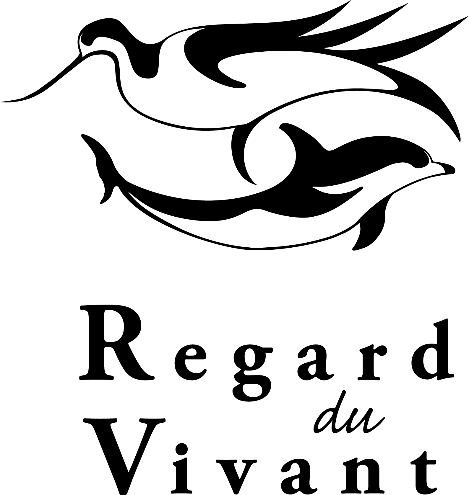 362_rdv-logo-2014-noir-100.jpg -