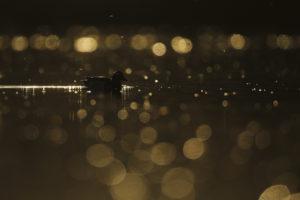 Ronds de lumière - Teddy Bracard