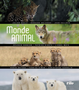 441_9782719110324-vilo-monde-animal-collectif-couverture.jpg -