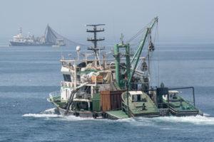 Ce n'est plus de la pêche, c'est de l'extermination - Pierre Gleizes