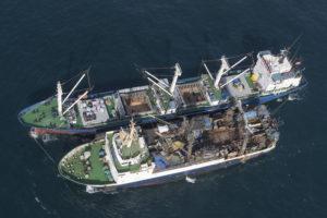 Flagrant délit de transbordement illégal en haute mer - Pierre Gleizes