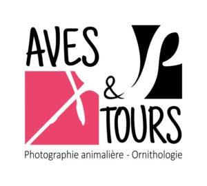 168_logo-avestours-ok.jpg -