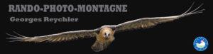 488_logo-rando-photo-montier.jpg -