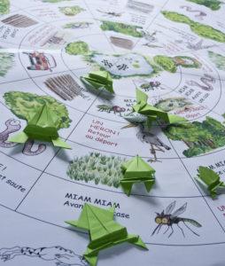 Plateau du jeu de la migration des grenouilles - E.Pops