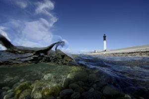 Protecteur de nos côtes et de sa biodiversité, le phare d'Enez-Sun, l'île de Sein - © Xavier Desmier