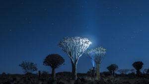 Nuit sous les étoiles à Quiver Tree, en Namibie - Mathieu Le Lay