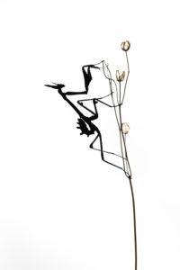 silhouette gracile - Nicolas HELITAS