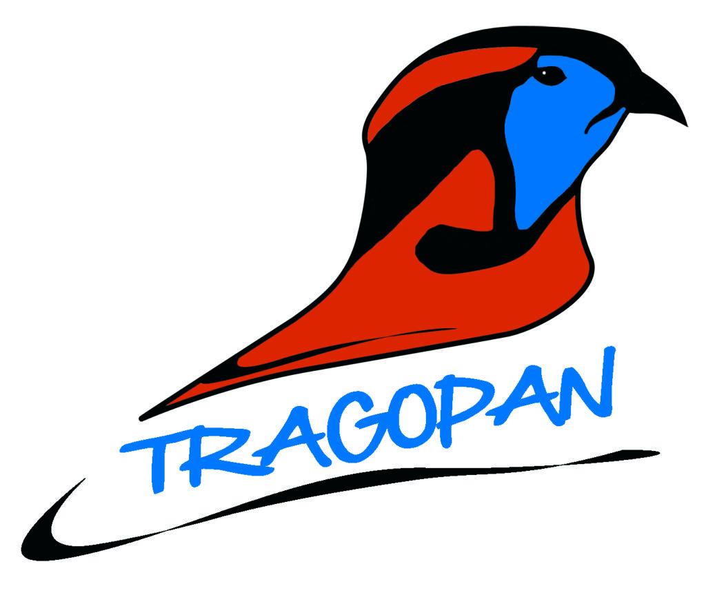 179_logo-color.jpg -