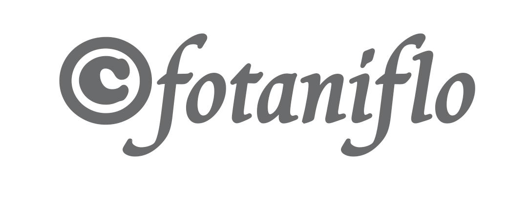 190_fotaniflo-video.jpg -
