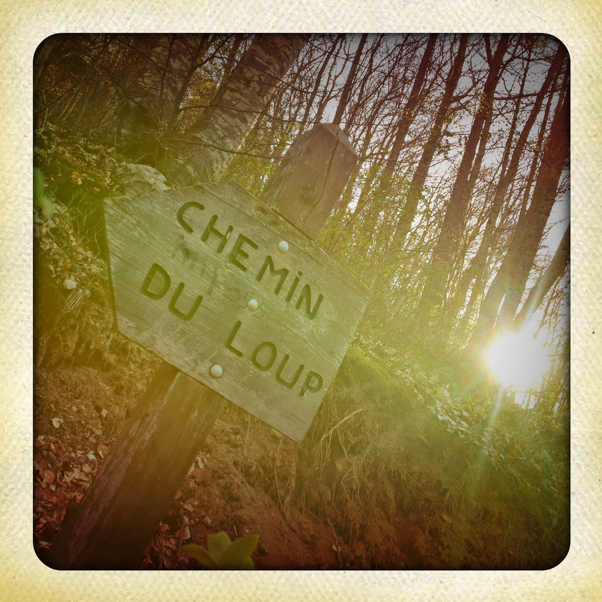 735_chemin-du-loup.jpg -
