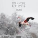 Un Conte d'Hiver