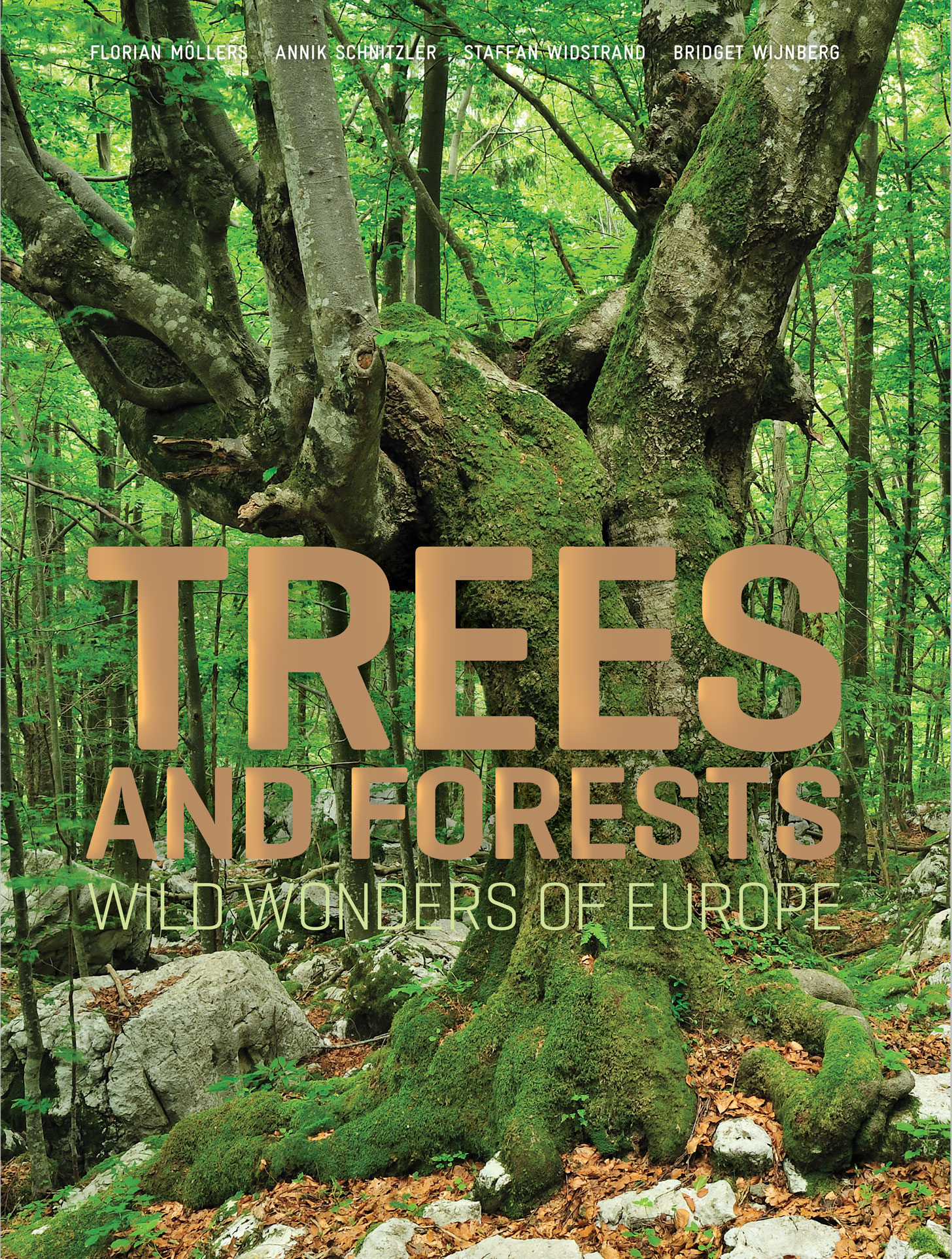 Forets Sauvages d'Europe