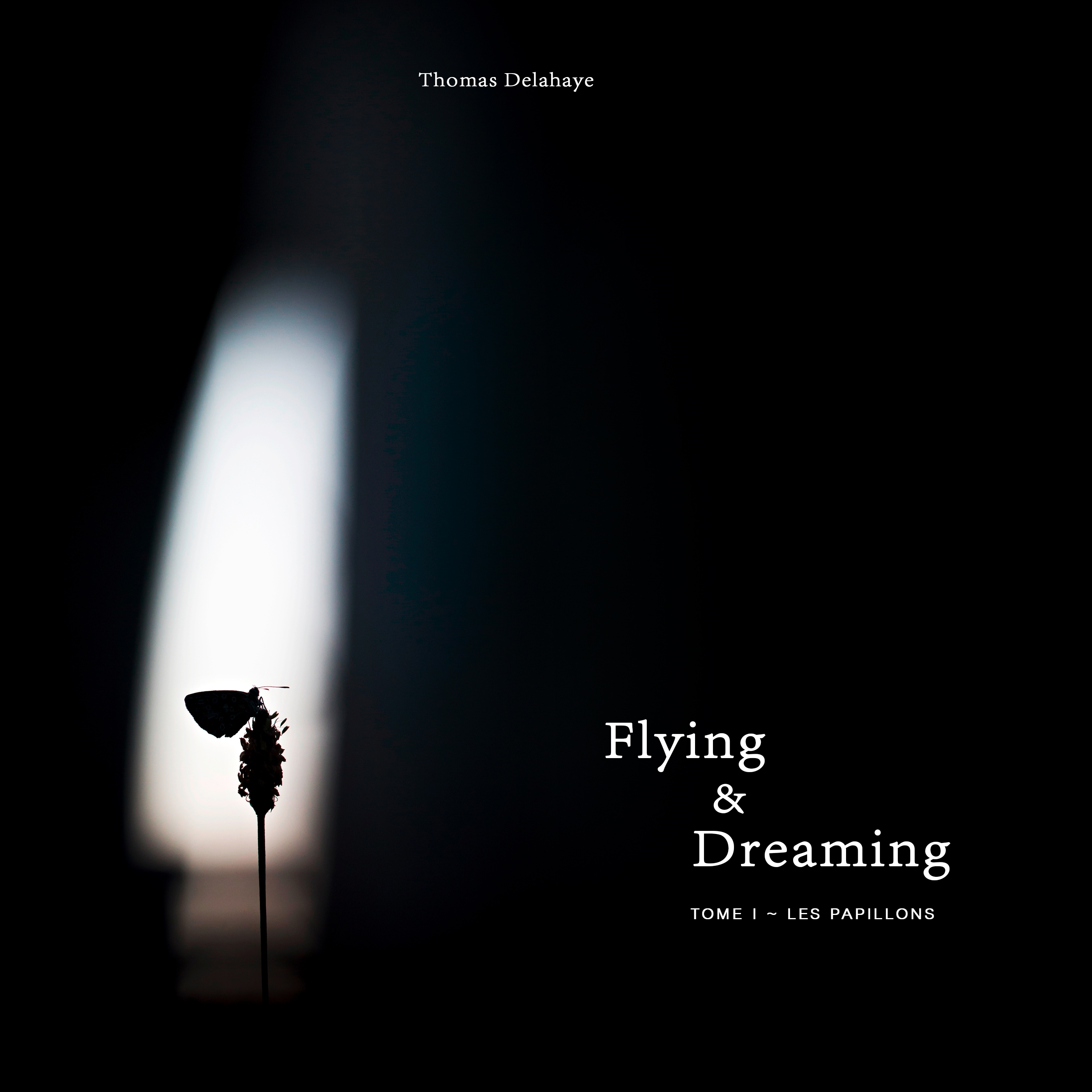 Flying and Dreaming