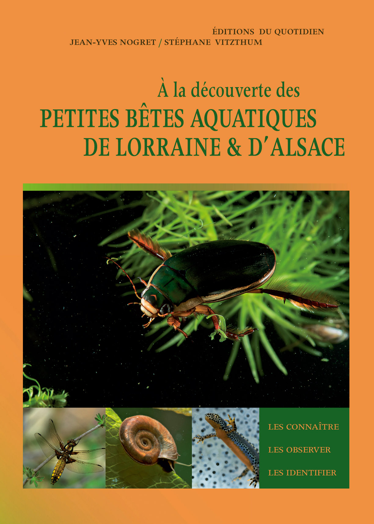 A la découverte des petites bêtes aquatiques de Lorraine et d'Alsace
