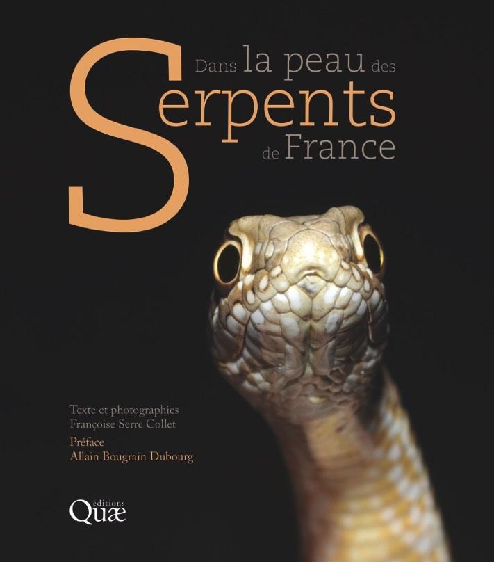 Dans la peau des serpents de france
