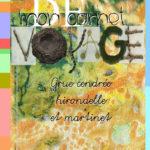 """Mon carnet de voyage """" Grue cendrée - Hirondelle - Martinet"""""""