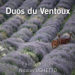 Duos du Ventoux
