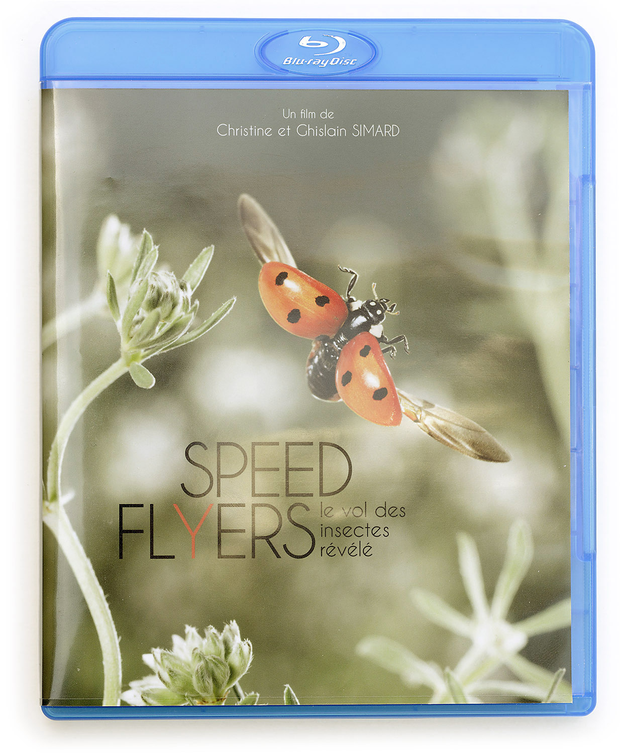 Speed Flyers, le film