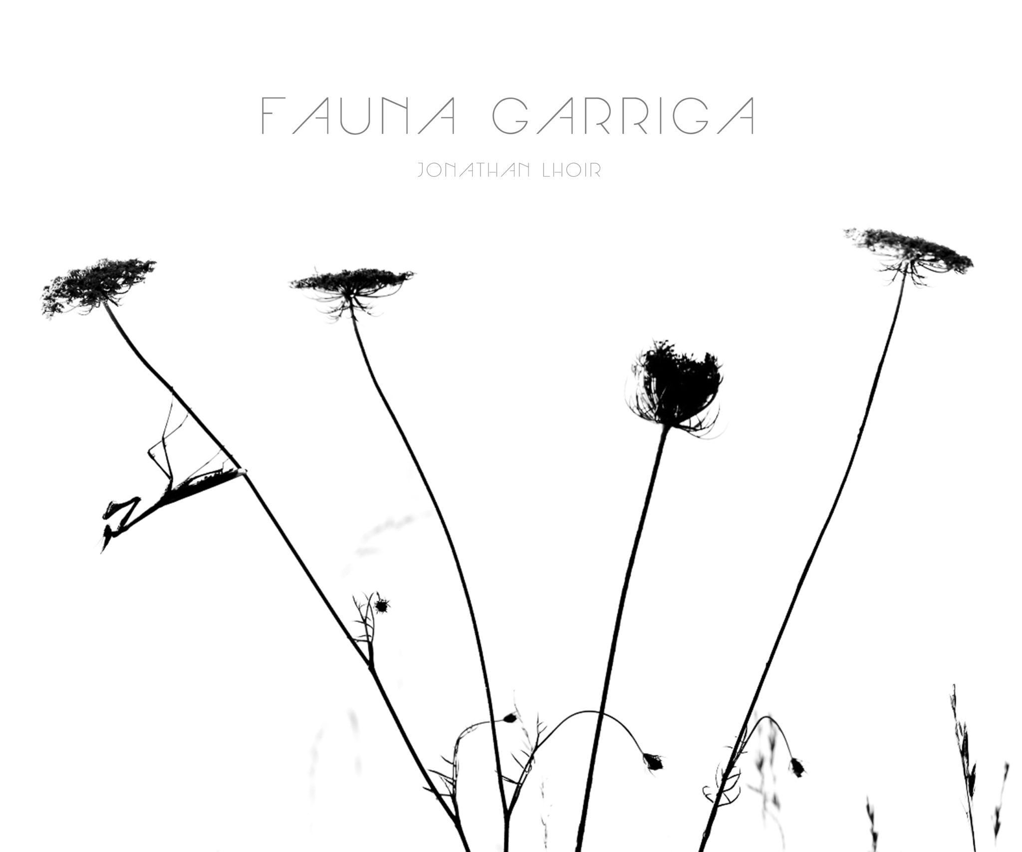 Fauna Garriga