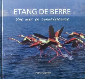 Etang de Berre, une mer en convalescence