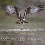 BASSES VALLÉES ANGEVINES Nature discrète et sauvage