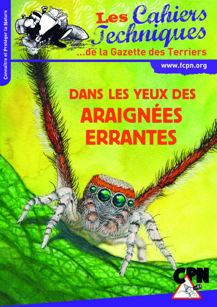 Dans les yeux des araignées errantes
