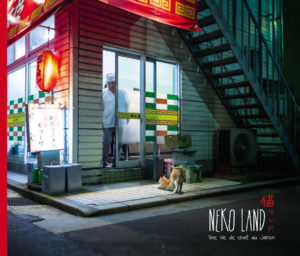 Neko Land - Une vie de chat au Japon