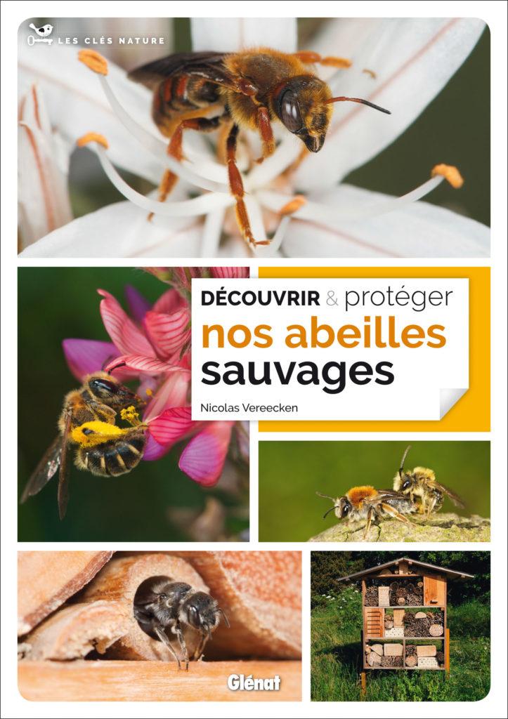 Découvrir et protéger les abeilles sauvages