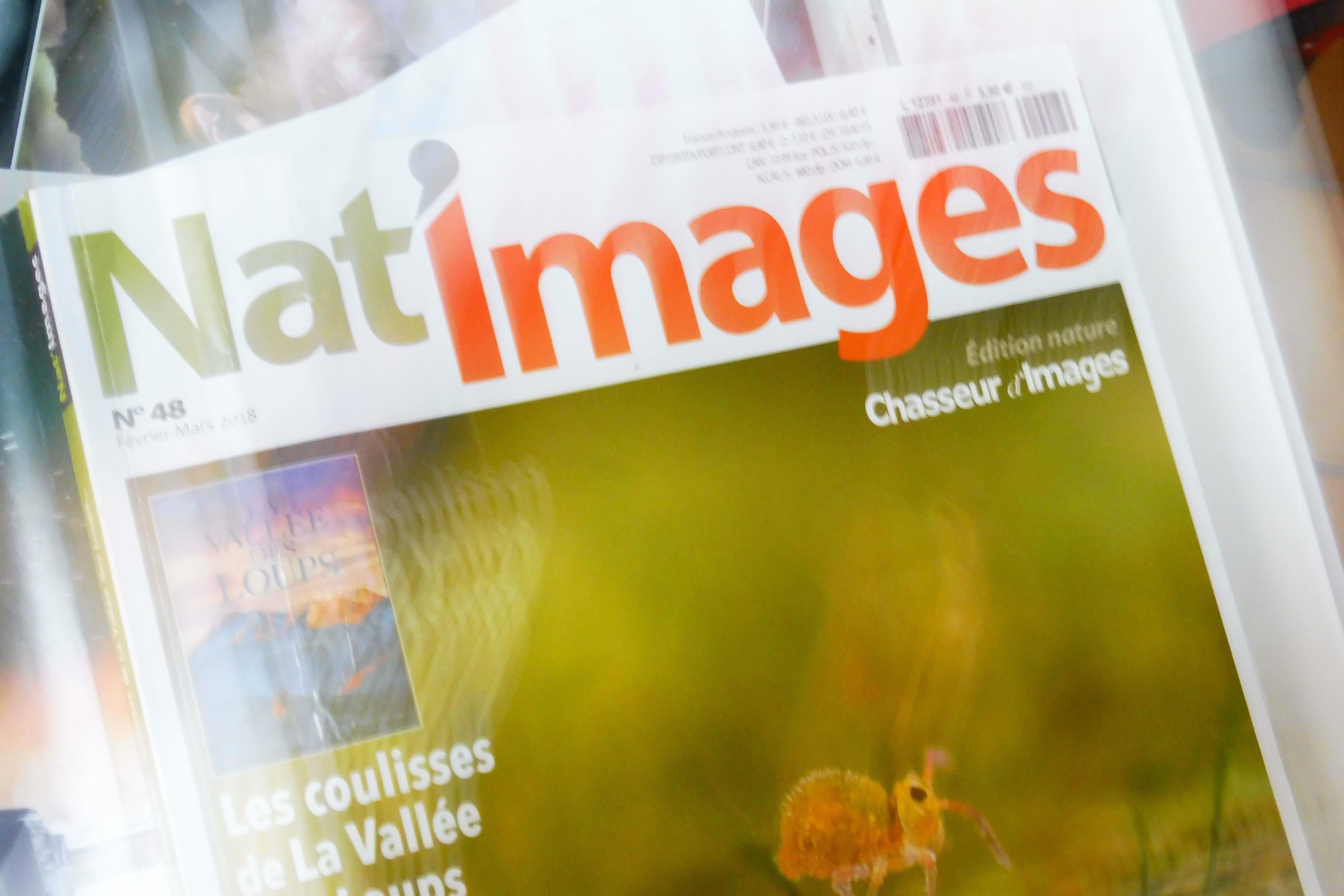 Nat image, Journal de la Haute Marne, l'union ....la voix du Nord...