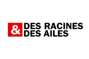 Le guêpier d'Europe en Ariège