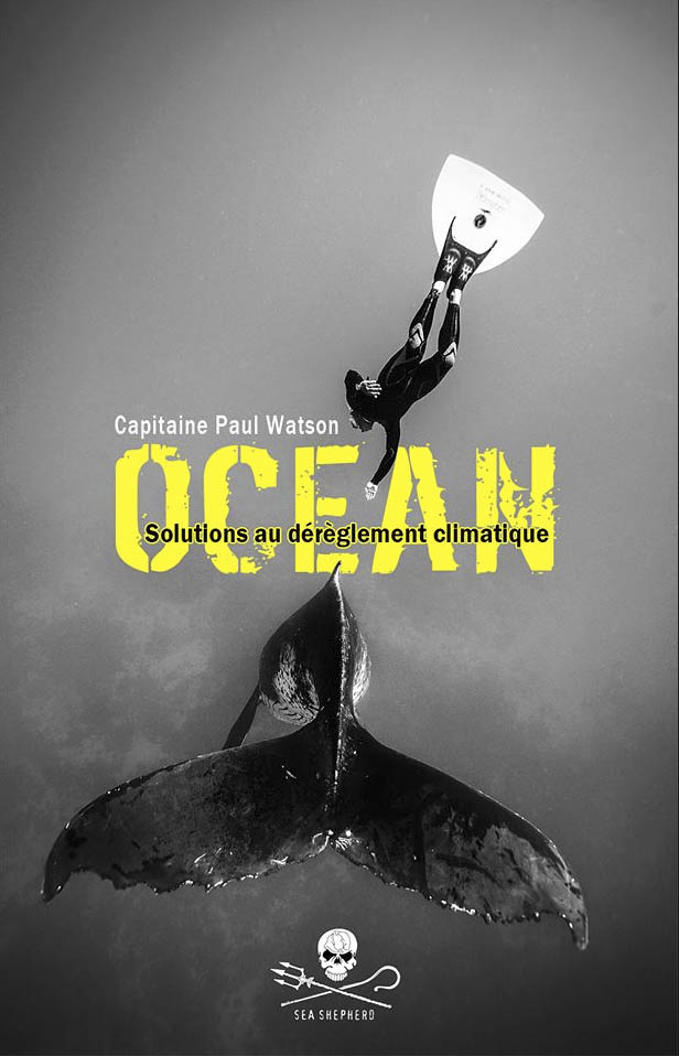 Océan, solutions au dérèglement climatique