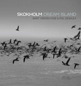 Skokholm Dream Island